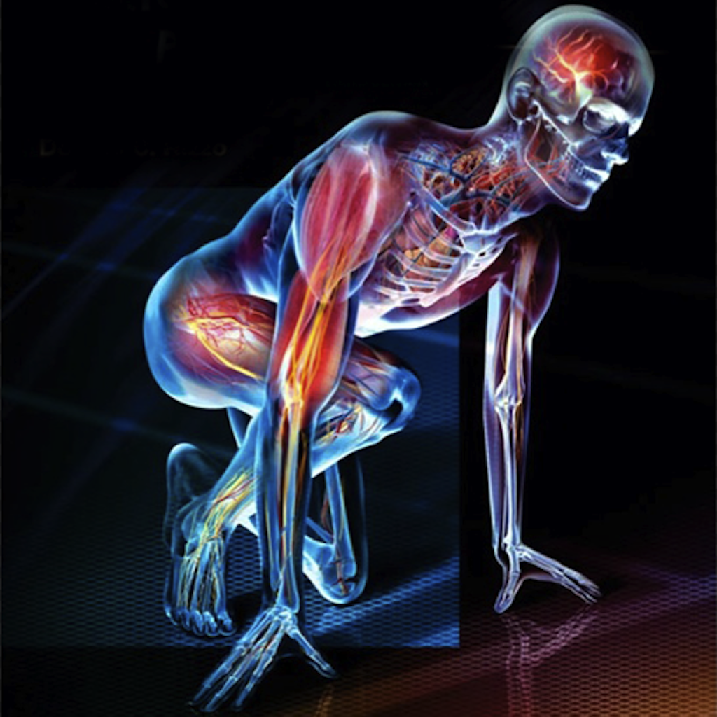 Physical Activity and Metabolism |